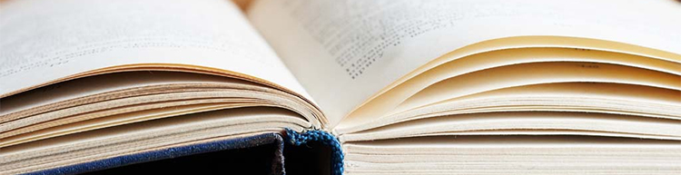 diccionario_cabecera