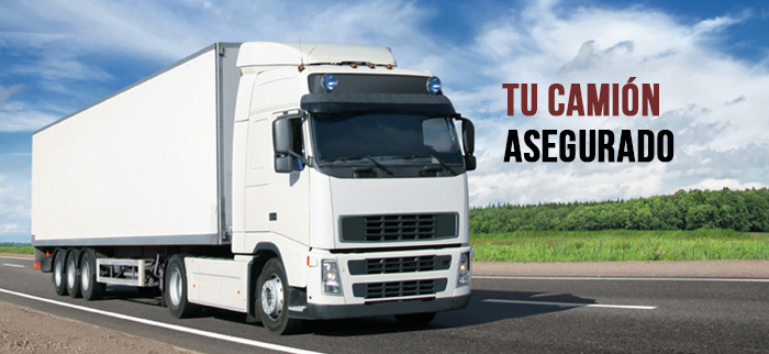 seguro_camion2