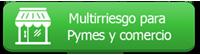 icon_pymes